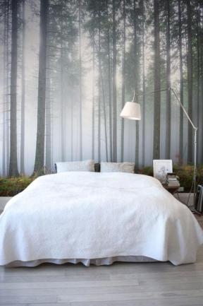 Carta da parati che riproduce una foresta con nebbiolina