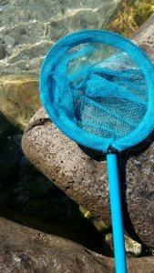 L'inseparabile retino blu puffo