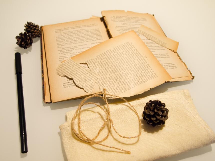 Materiale per segnaposto con pigne e pagine di vecchio libro