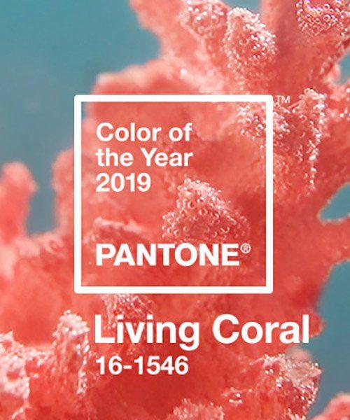 Living Coral 16-1546 - Colore dell'anno 2019