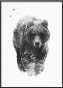 Poster in bianco e nero con orso e montagne sovrapposte