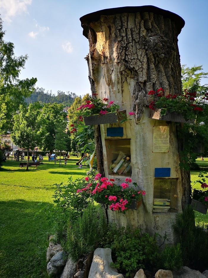 Albero per book crossing nel parco di Brentonico
