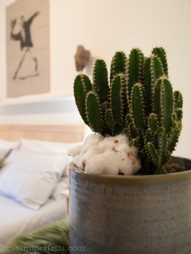 Stanza sulle tonalità del grigio: dettaglio pianta grassa