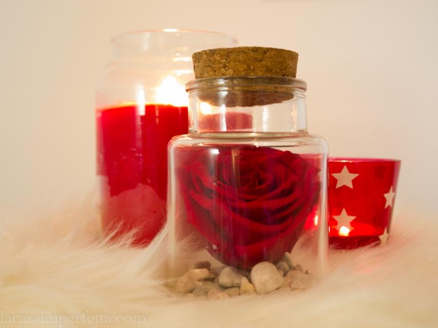 Stanza sulle tonalità del grigio con qualche tocco di rosa e rosso: dettaglio di rosa stabilizzata in barattolo