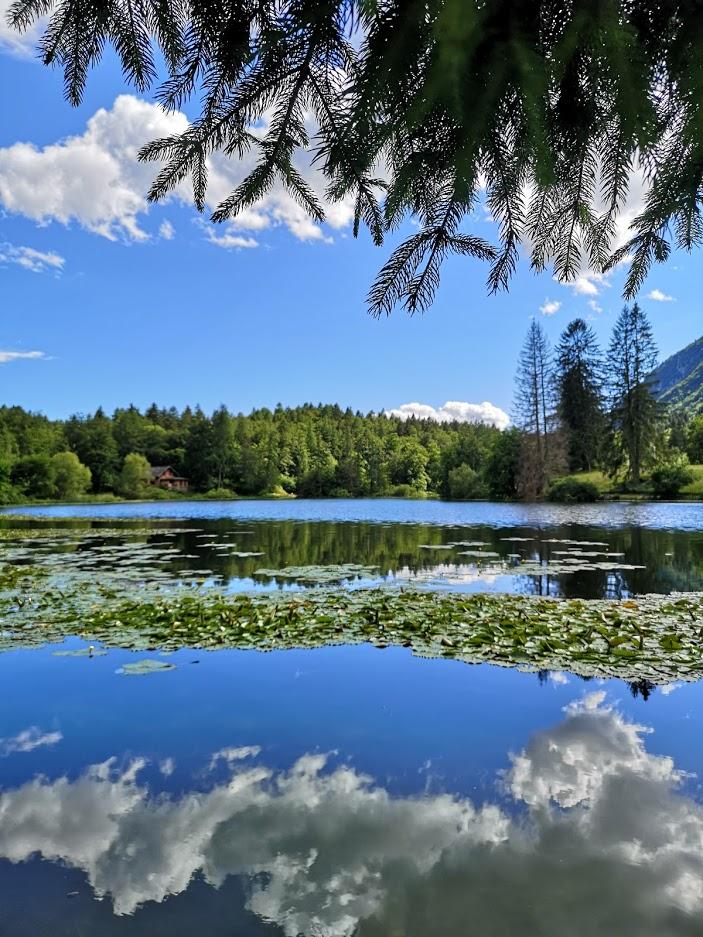 vista del lago di Cei (TN) in una giornata di giugno